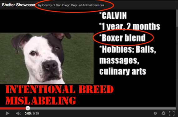 breed-mislabeling-sd-county